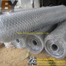 Chicken Wire Mesh Hexagonal Wire Fencing Poultry Wire Netting